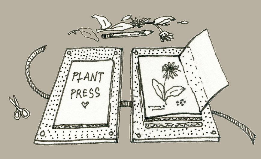 how to make a plant press