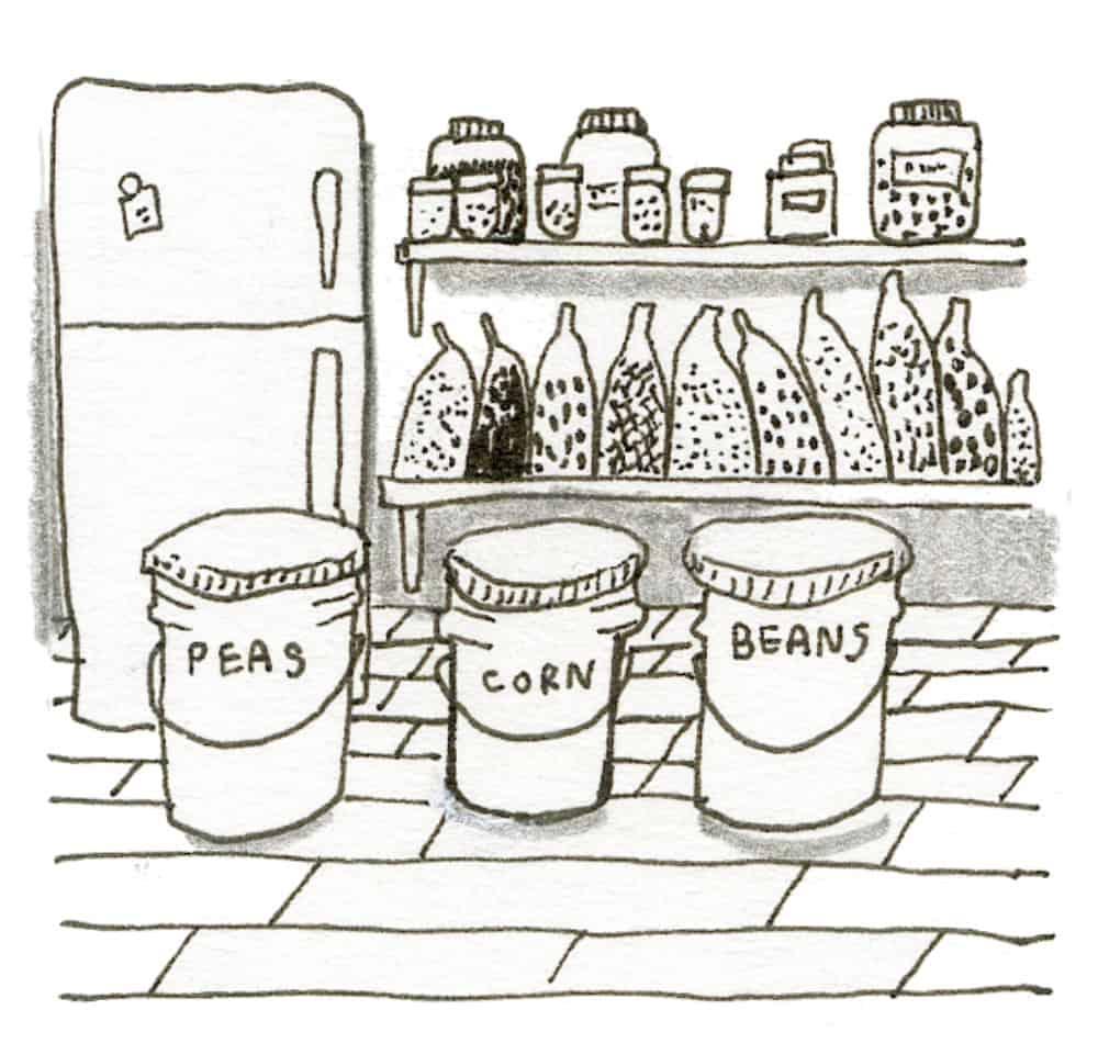 root cellar food storage