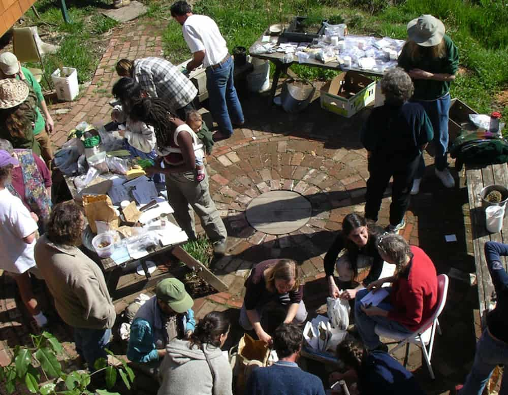 overhead view of seed swap
