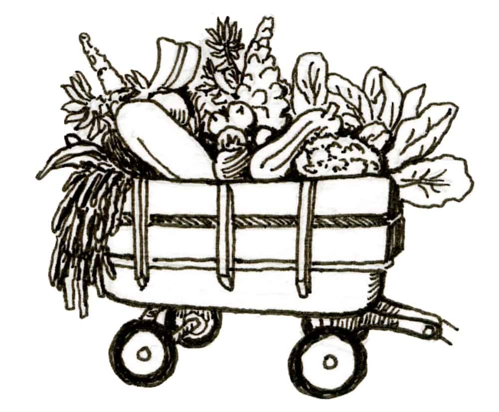 wagon cornucopia full of vegetables