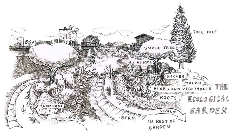 ecological permaculture design