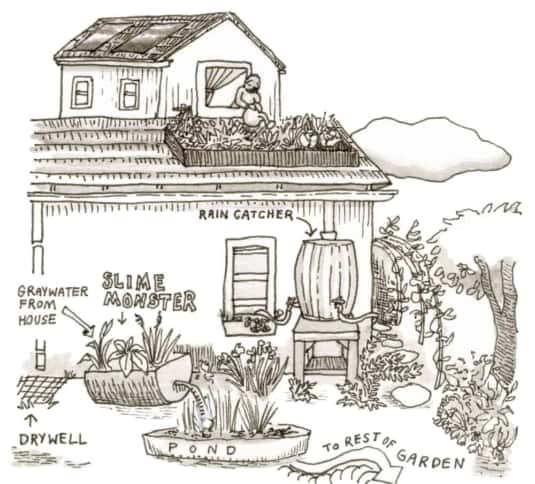 Permaculture Water System